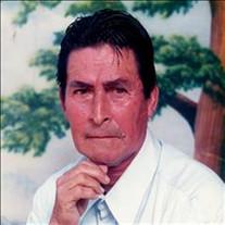 Luis Llerenas-Mendoza