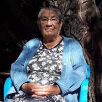 Ma. Teresa Rodriguez Loyola