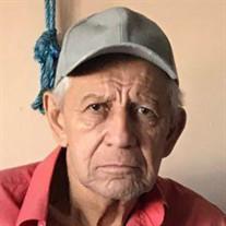 Jose Francisco Lazo Flores
