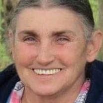 Donna J Webb