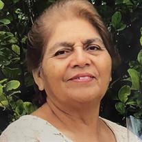 Virginia Zertuche Lopez