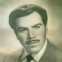 Guadalupe Zarate