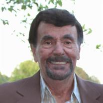 Mr. Albert Ray Dulaney