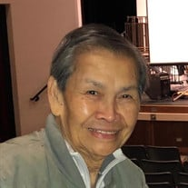 Mr. Ismael V. Raneses of Streamwood