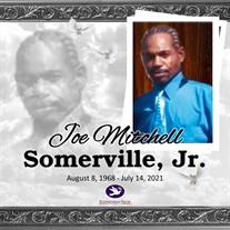 Mr. Joe Mitchell Somerville Jr.