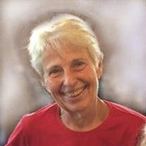 Ann Hopkins Cohen