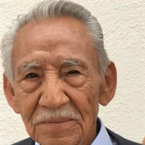 Pedro Segura Ochoa