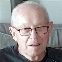 Roy Steinman