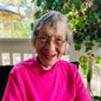 Patricia Ann Monroe
