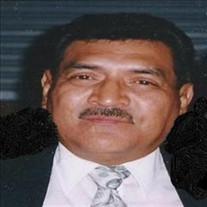 Henry Austin Ortega