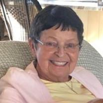 Patricia H. Hynes