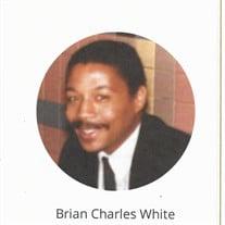 Brain White