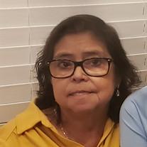Sofia Arzola