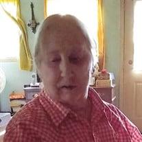 Shirley Ann Hometh