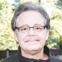 David Charles Stein