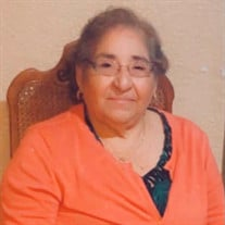 Mrs. Josefa Medina Hiracheta