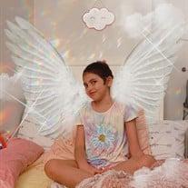 Amanda Liz Barreto-Aviles