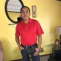 Mr Guadalupe Davalos