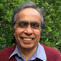 Dr. Dom Wadhwa