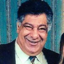 Hany J. Badawy