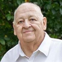 Mr. Paul R. Hallman