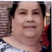 Amalia Herrera Gonzalez