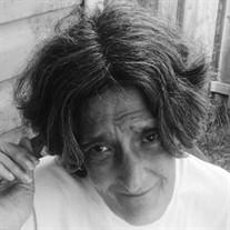 Lynn Ann Rokicki