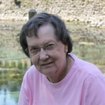 Sara Ann Clark Huey
