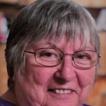 Patricia Ann Higgins