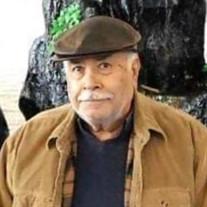 Jose Maria Arevalo Silva