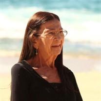 Nancy Lee Visser