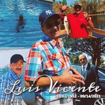 Luis A Vicente