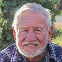 Jerry Lynn Pesnell