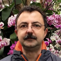 Vlad Constantin Babii