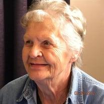 Virginia Sue Snyder