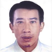 Kim Ngan Tran