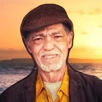 Mr. Domingo R. Rosado Vega