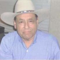 Mario Louis Garcia