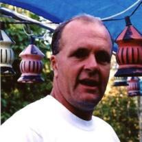 Peter D. Morrissey