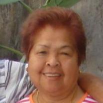 Carolina N Serrano