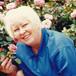Judy Sherwood Hollis
