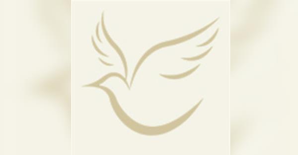 Elizabeth Ann Draeger Obituary - Visitation & Funeral