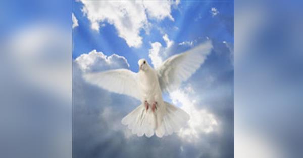 Randall E  Ahlstrom Obituary - Visitation & Funeral Information